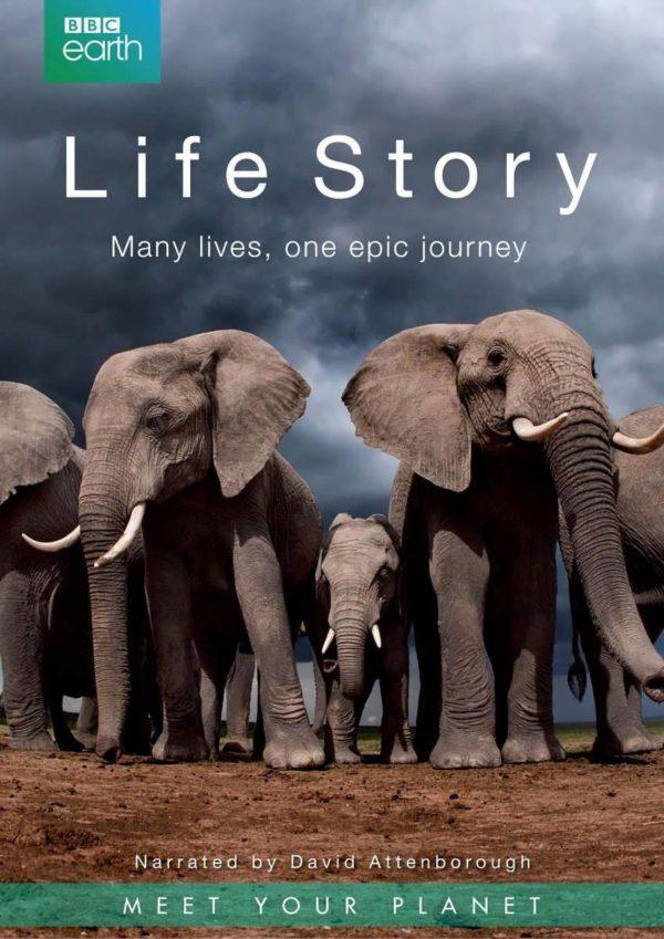 Life Story - BBC Earth